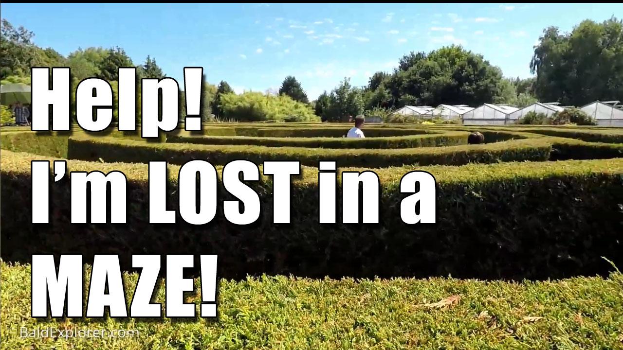 The maze garden