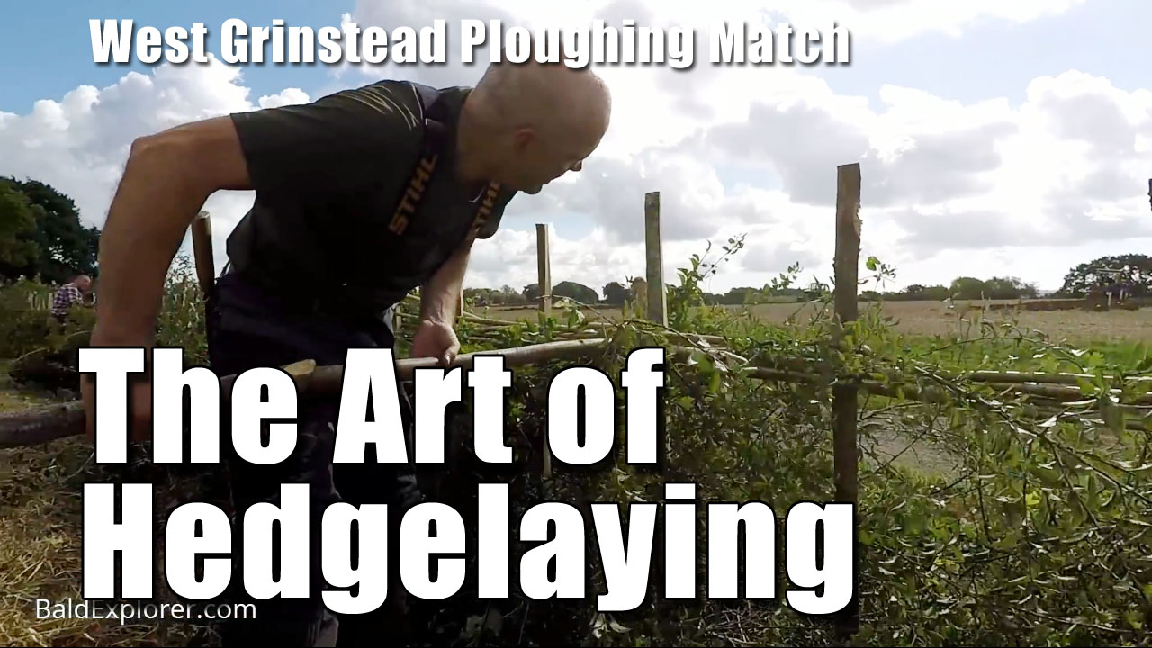 The Art of Hedgelaying