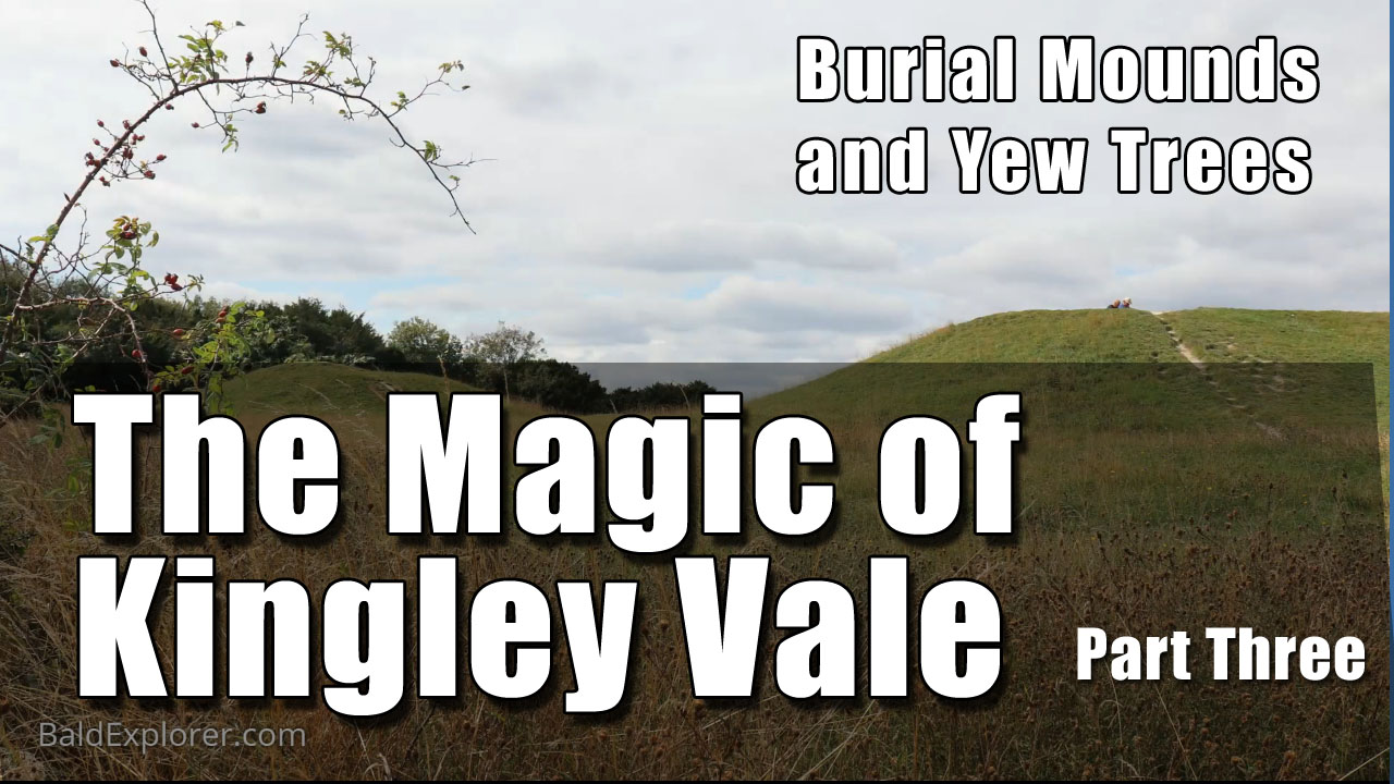Burial Mounds and Yew Trees