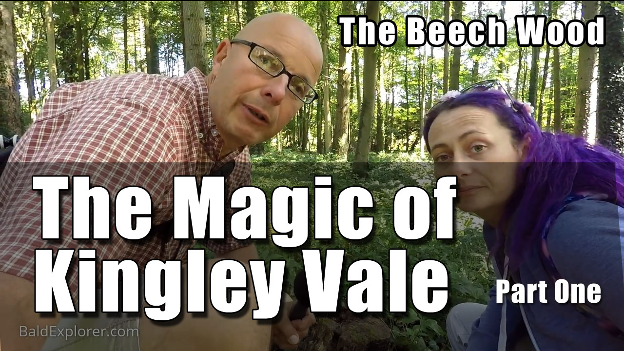 The Magic of Kingley Vale