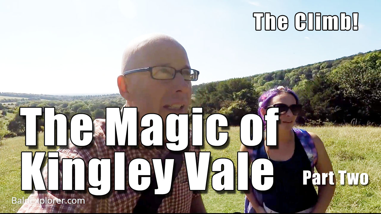 Kingley Vale Part Two