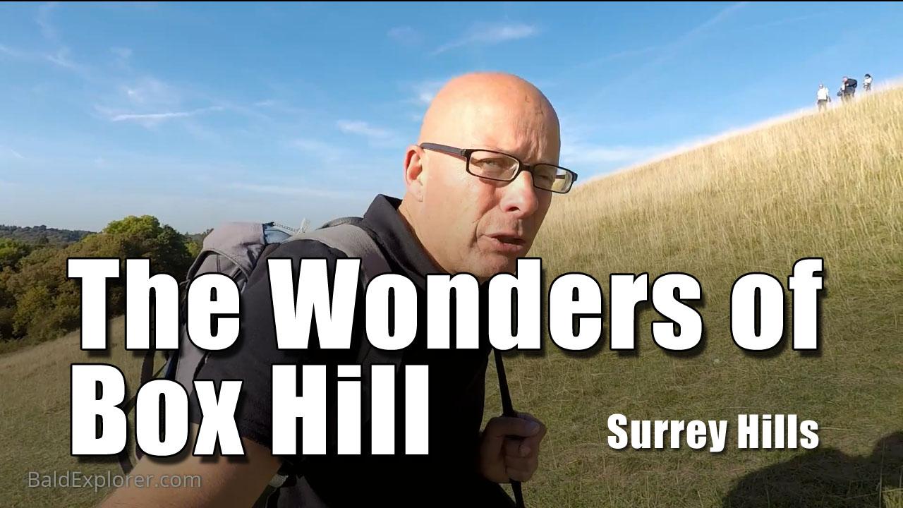 A Scramble Up Box Hill in Surrey