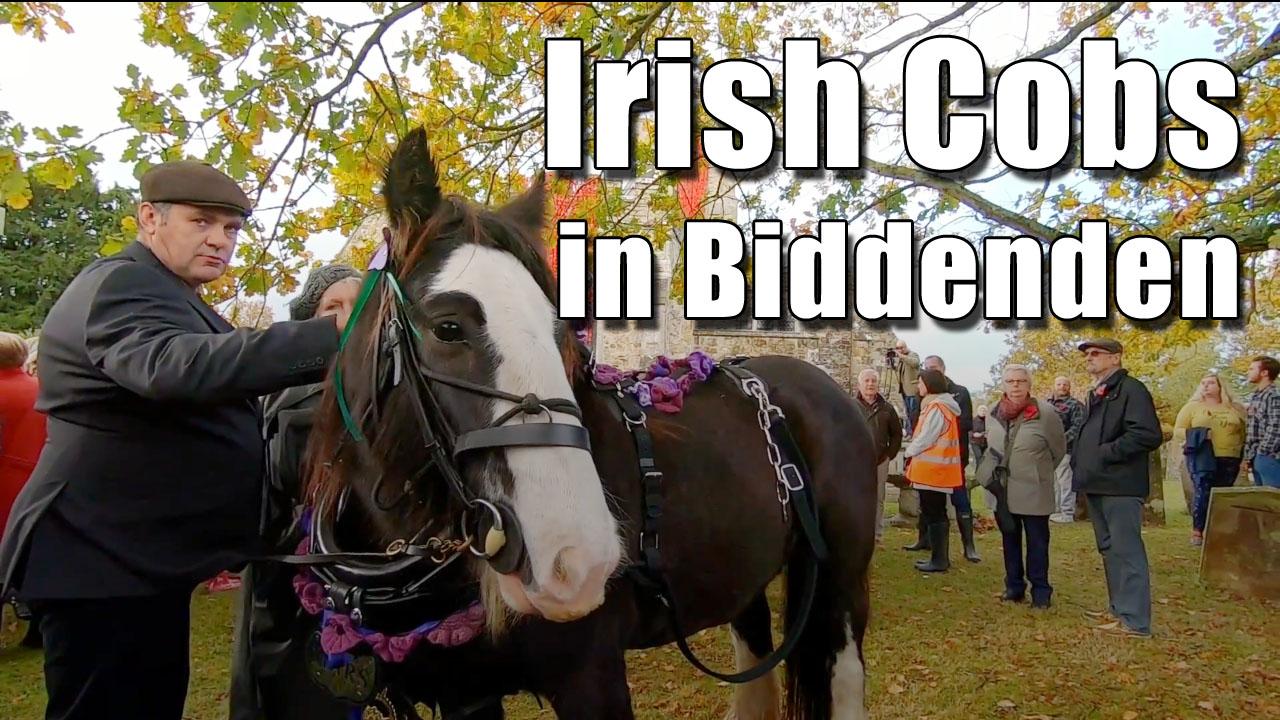 Irish Cobs