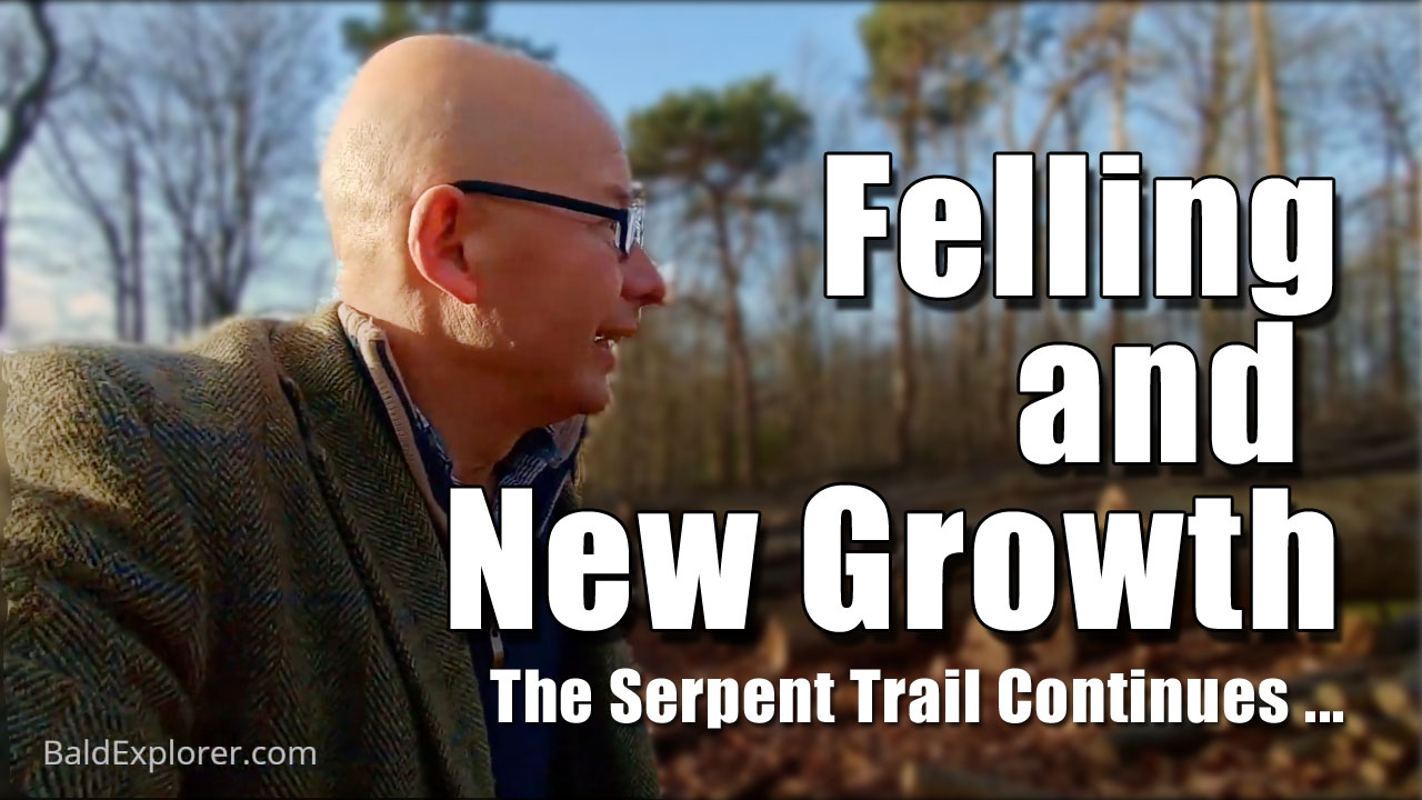 Felling and New Growth on the Serpent Trail (Part Two)
