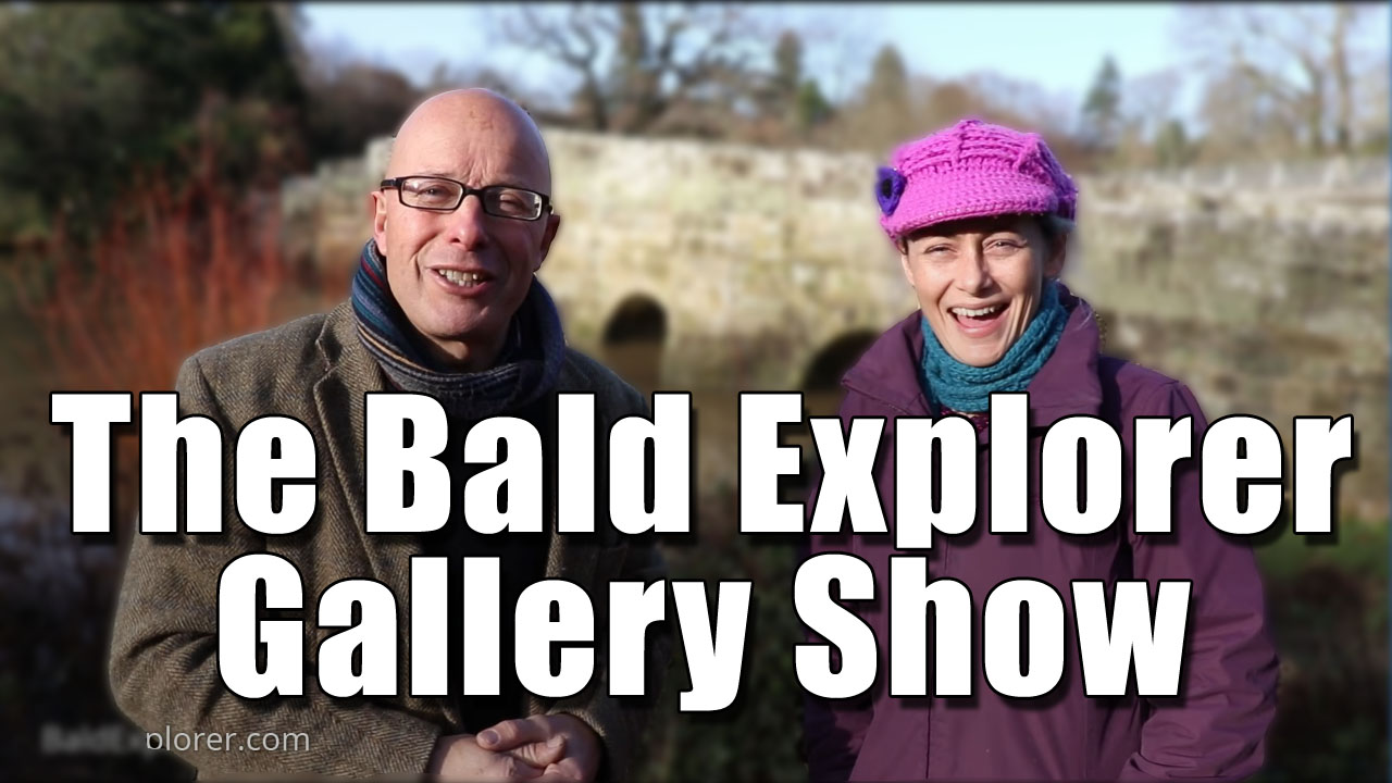 The Bald Explorer Gallery Show