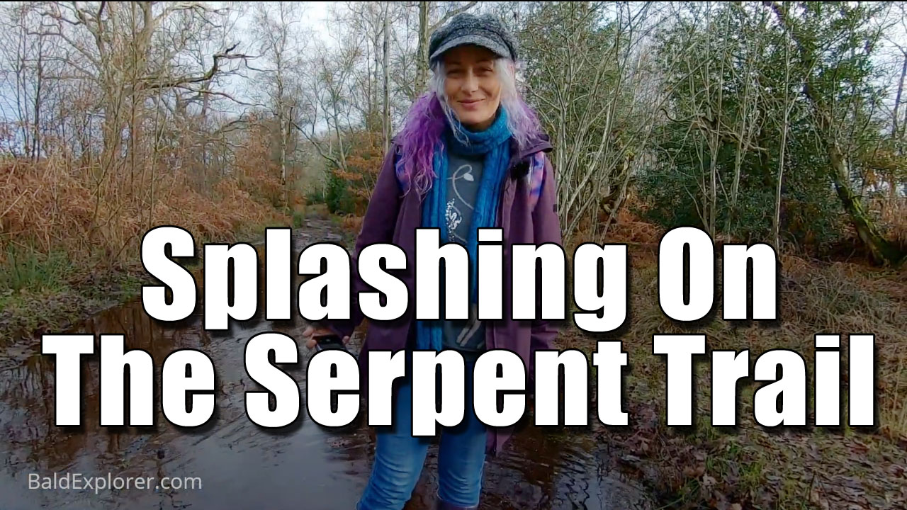 Into Open Heathland on The Serpent Trail (Part Four)