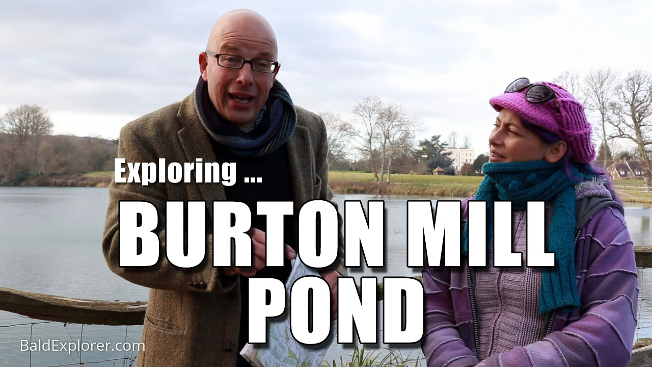 Exploring the Delights of Burton Mill Pond in West Sussex