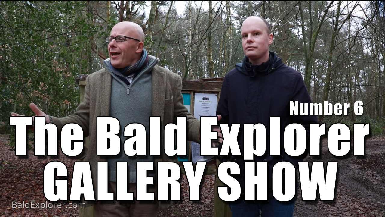 The Bald Explorer Gallery Show - Number 6