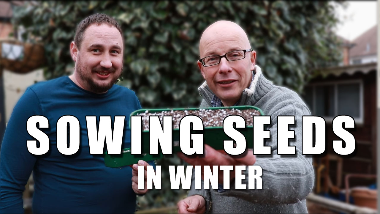How To Sow Seeds in Winter