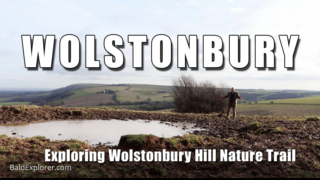 The Winter Nature of Wolstonbury Hill