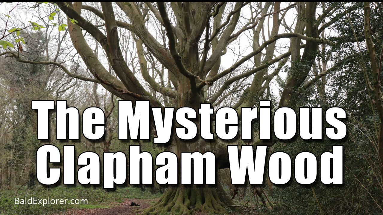 The Clapham Wood Exploration