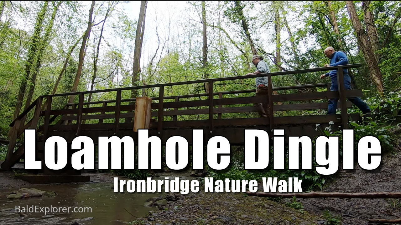 Loamhole Dingle Nature Walk at Ironbridge - Part One