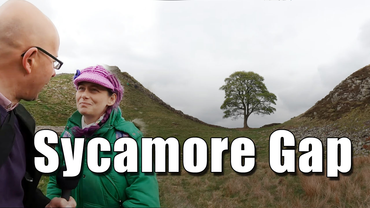 Exploring Sycamore Gap in Hadrian's Wall in Northumberland!