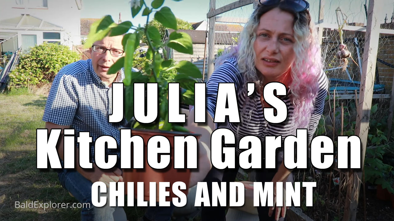 Julia's Kitchen Garden - Episode 4: Chilies and Mint