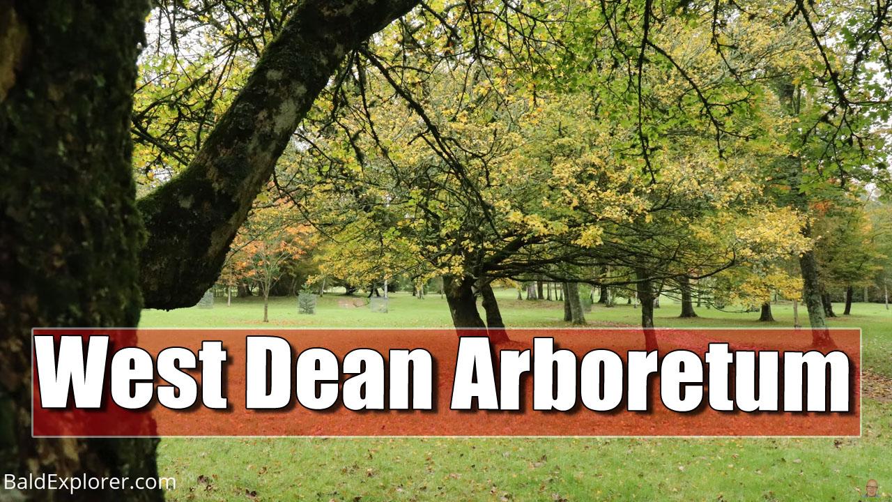 West Dean Arboretum with Tom Brown, Head Gardener