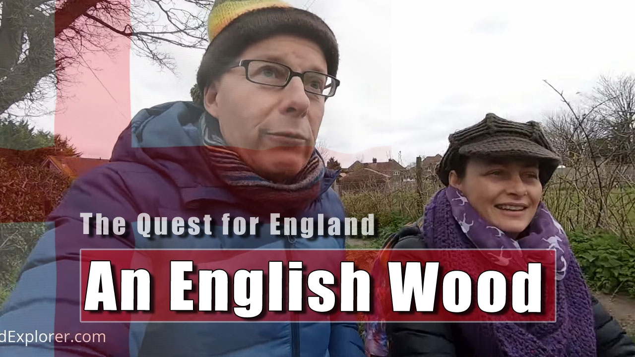 The Quest for Englnd: In To The Woods We Go!