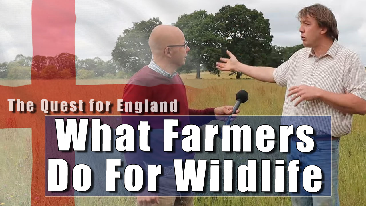 The Quest For England - In Which Lee Dallyn Tells Me What Farmers Really Do