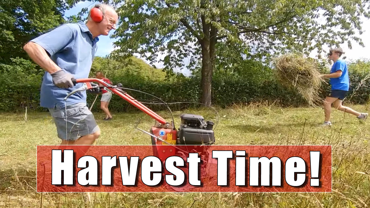 How To Harvest a Species Rich Hay Meadow - Part Two