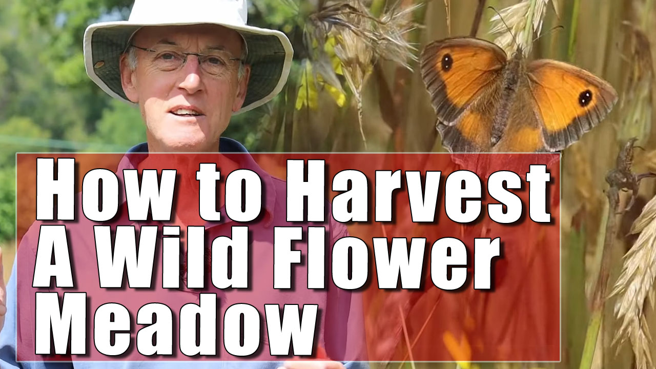 How To Harvest a Species Rich Hay Meadow - Part One