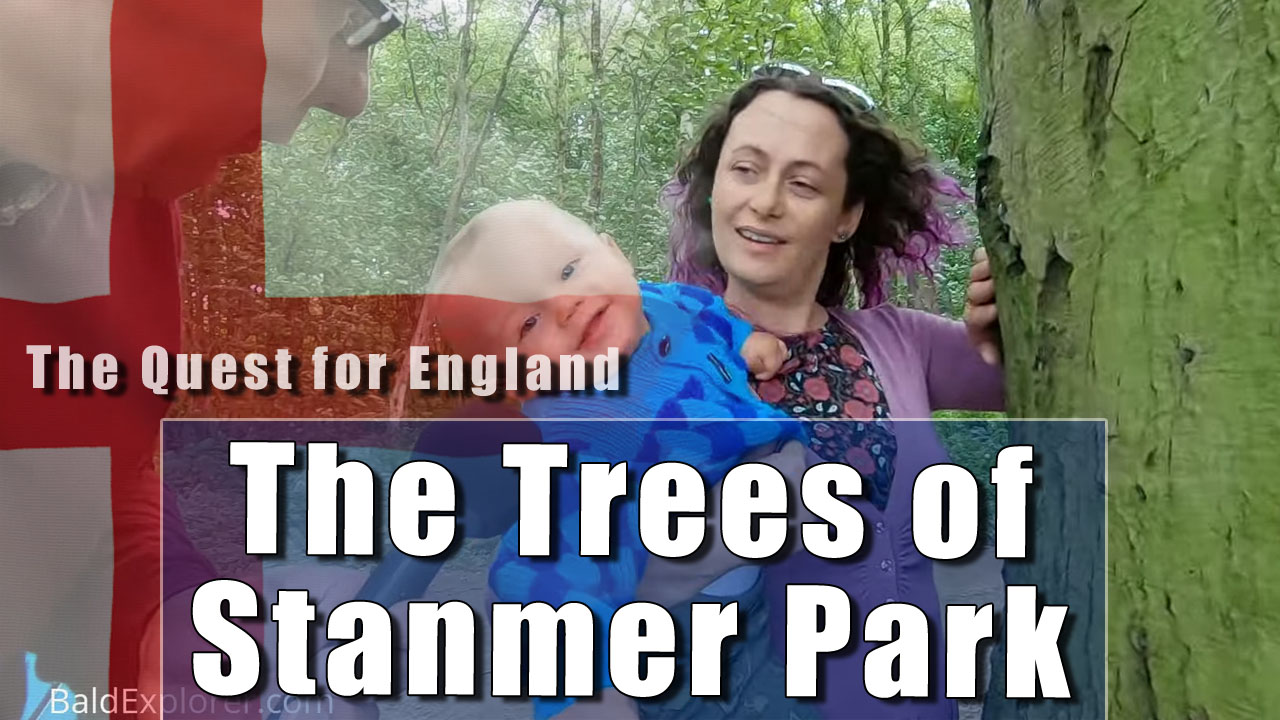 The Quest For England - In Which Julia and I Look at Stanmer Park's Trees