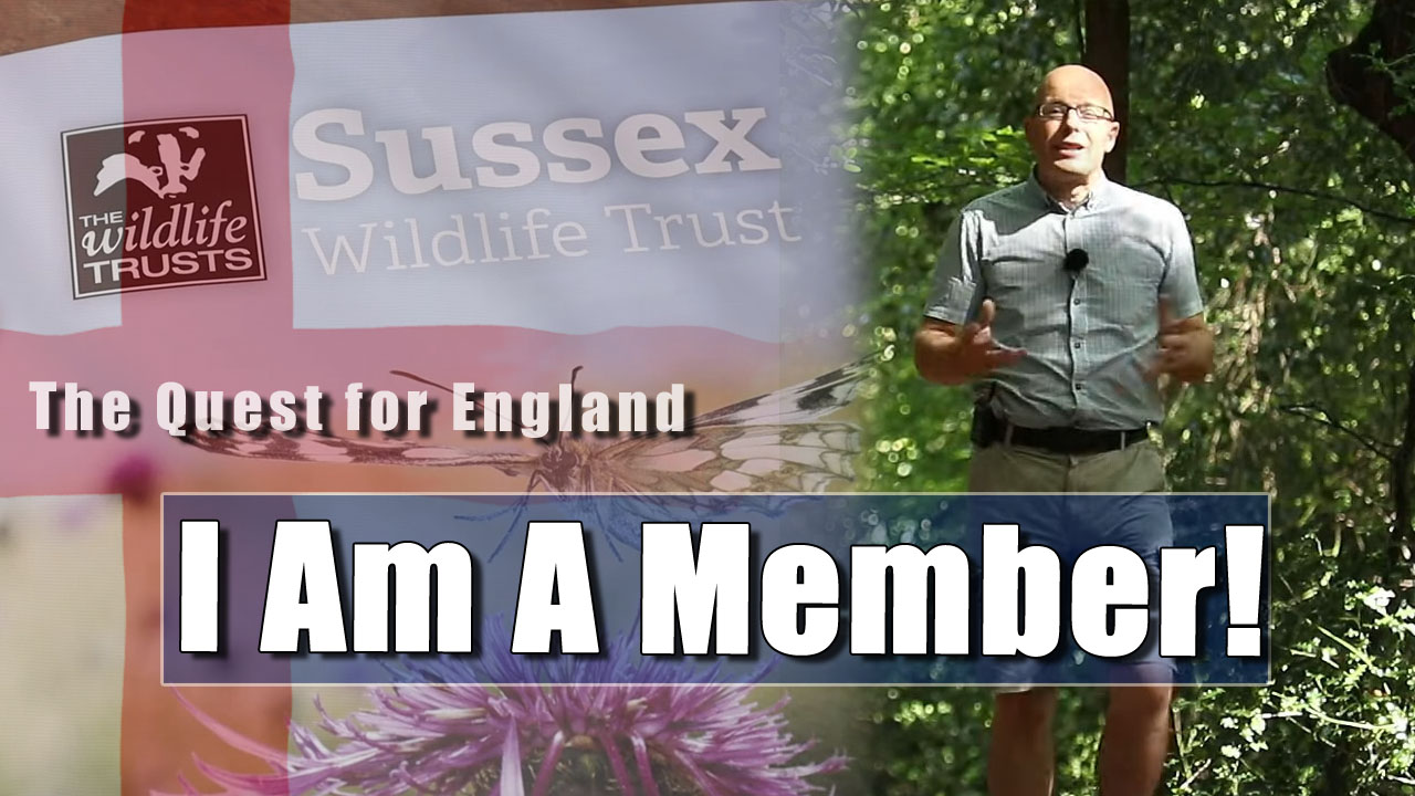 I am a Member of the Sussex Wildlife Trust!