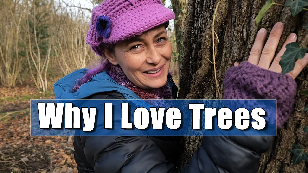 Why I Love Trees - Julia's Woodland Walk
