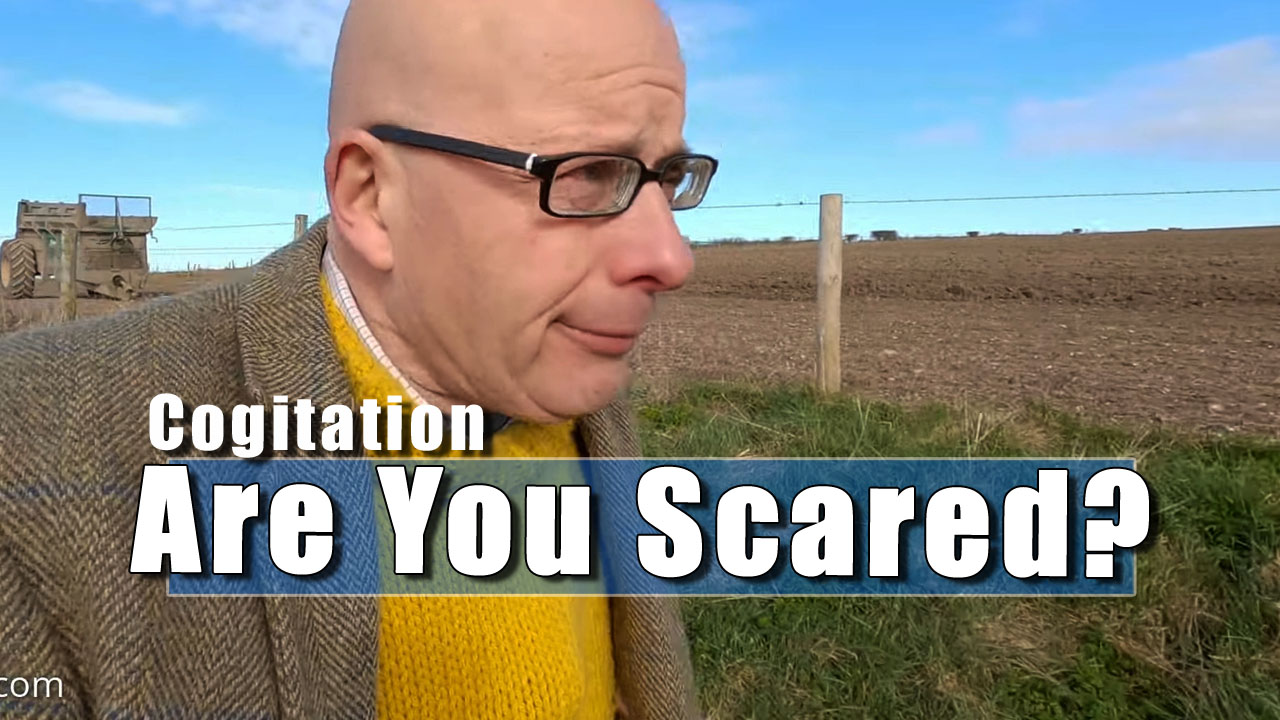 Cogitation - How Frightened Do You Feel At The Moment?
