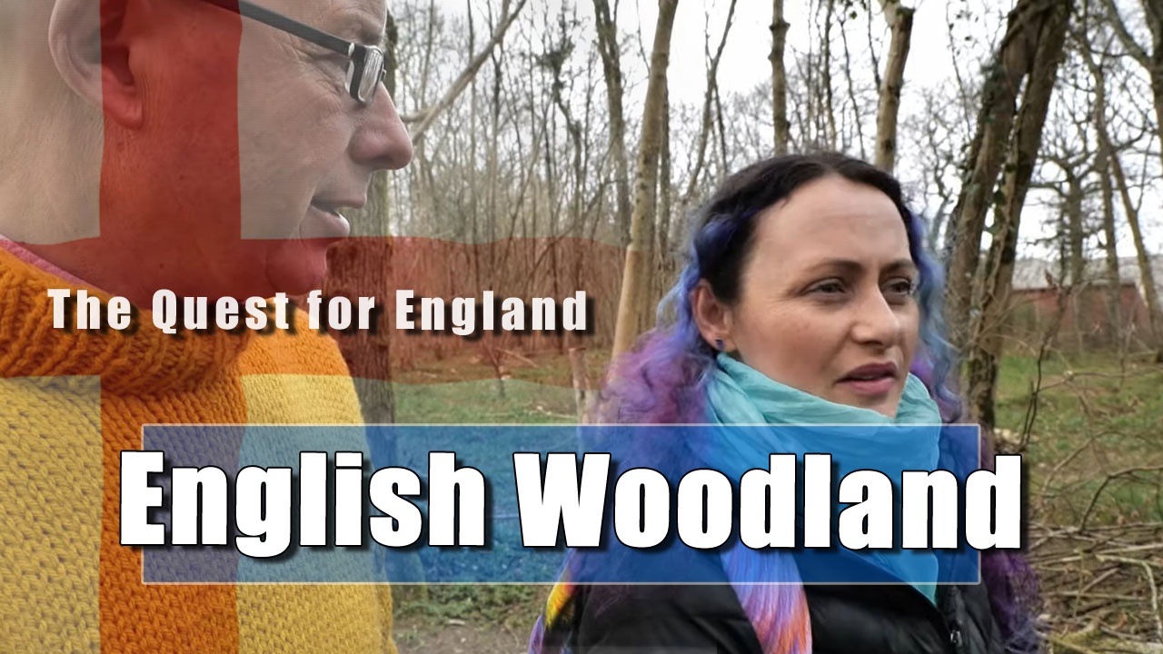 The Quest For England - A Brief Jaunt through Tottington Woods Again