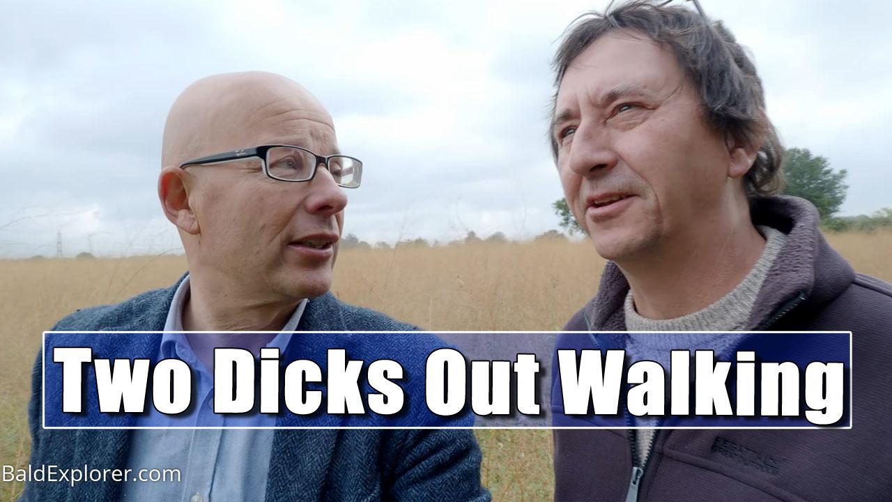 Van Life UK | Comedy Stroll in West Sussex